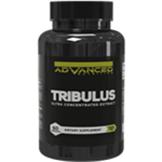 adv_tribulus.png